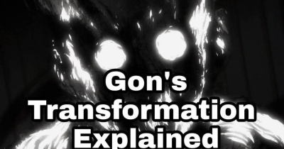 "Gon""s Transformation Explained!"