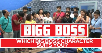 Which Bigg Boss character suits you?